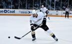 Performance d'équipe de sport professionnel et rémunération des entraîneurs : le cas de la LNH (Ligue Nationale de Hockey)