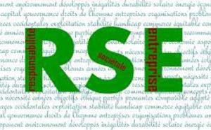 Institutionnalisation de la RSE par les acteurs du conseil issus de l'audit financier : analyse des stratégies de légitimation